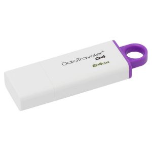 Cle-usb-KINGSTON-Data-Traveler-G4-64Go-USB-1-nadnet
